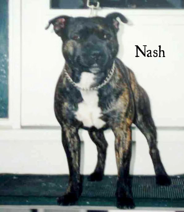 Nash-stand