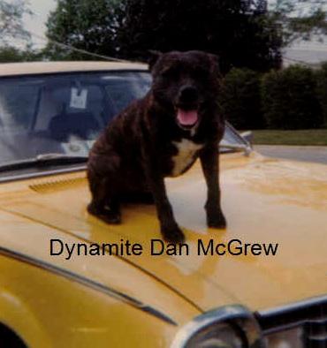 dynamitedanmcgrew