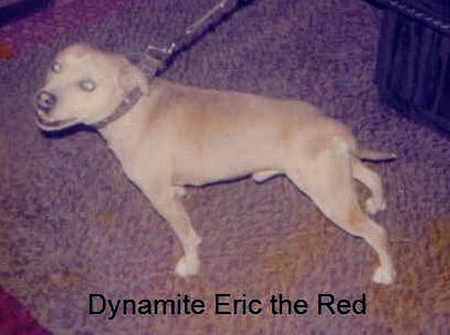 dynamiteericthered